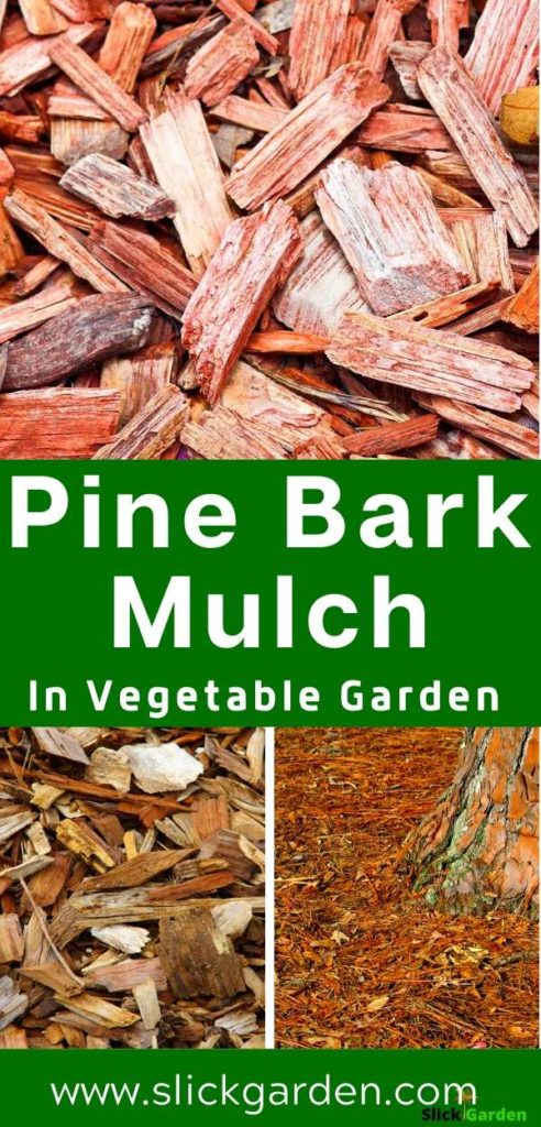 Here Is Everything About Using Pine Bark Mulch In Vegetable Garden