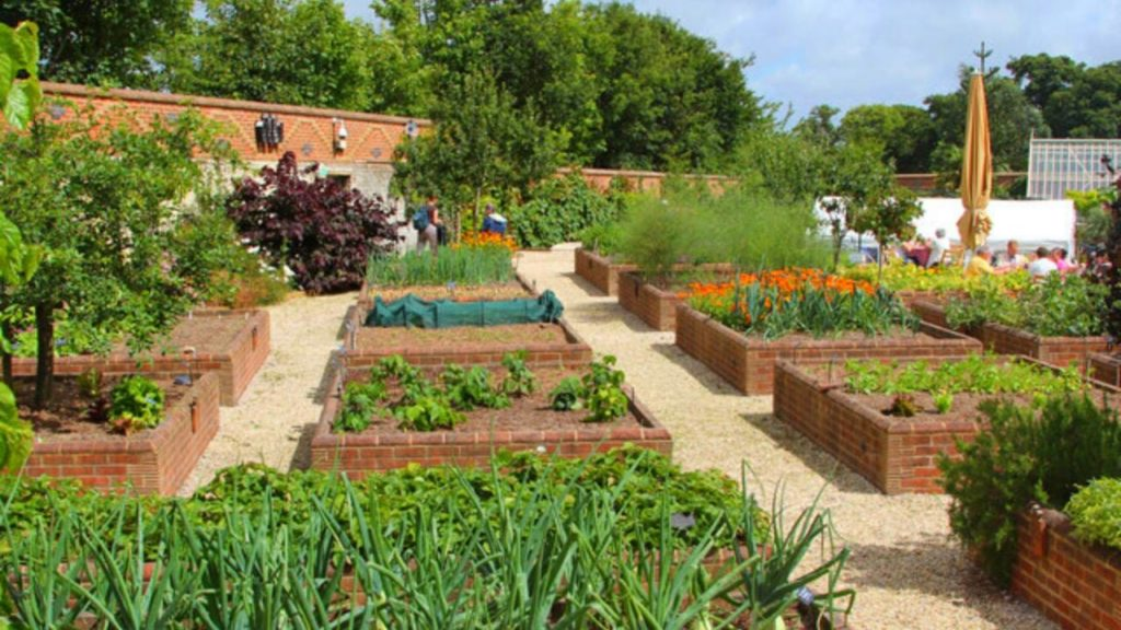 How Many Tomato Plants In A 4x4 Raised Bed Slick Garden